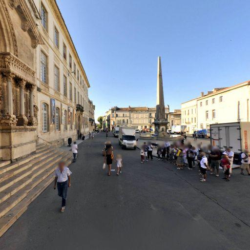 Eglise Saint Vincent - Église catholique - Arles