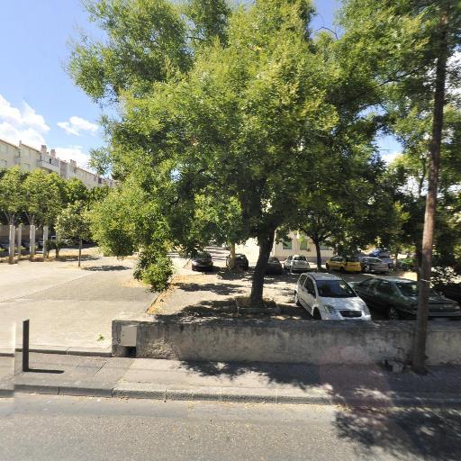 Hasnaoui Hacène - Concessionnaire automobile - Marseille