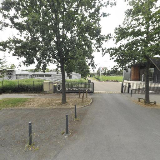 Angers S.C.O. - Club de sports d'équipe - Angers