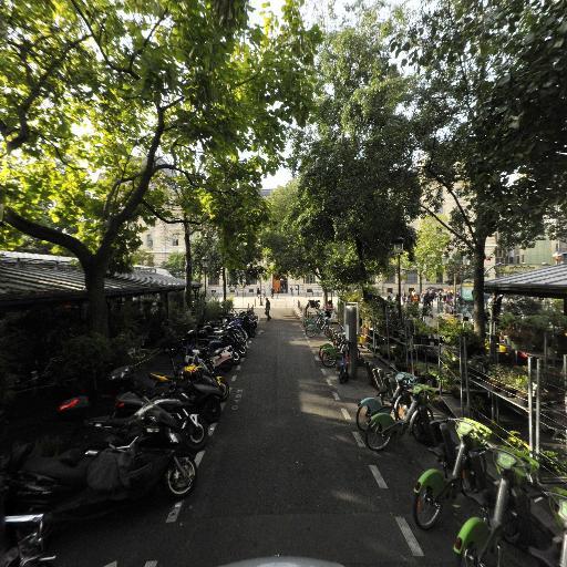 Shawnee Plant Shop - Magasin de décoration - Paris